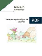 Criacao_galinha_caipira.pdf