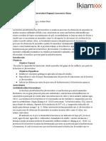 Proyecto Final de Geología - Minango y Ruiz