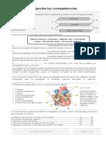Excretor y circulatorio 2019