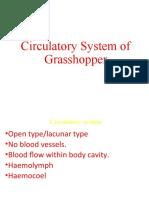 Respiratory of grasshopper