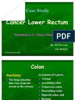 Case Study CA Lower Rectum
