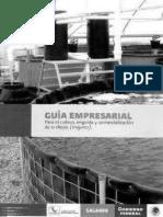 GuiaEmpresarialTilapiaVBN.pdf