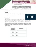 OE_M2_ActividadPráctica2_Plantilla_v2.docx