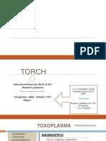 TORCH-MALFORMACIONES SNC