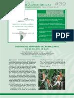 Destino del nitrógeno del fertilizante.pdf