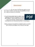 Rapport_de_stage_Tunisair_Technics (1).pdf
