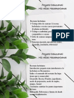 Proyecto transversal.pdf