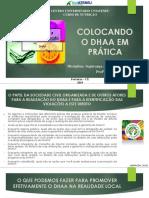AULA VI - Colocando o DHAA em prática.pdf