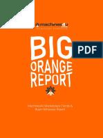 Machines4U Big Orange Report.pdf