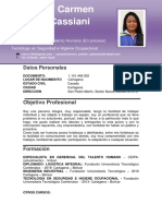 HSE HV MARIA CANTILLO  ING IND.pdf