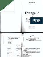 Evangelios Sinopticos- H. LONA
