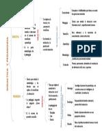 CUADRO_SINOPTICO_DIDACTICA_Y_PEDAGOGIA