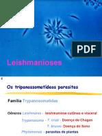 24_04_Leishmaniose.ppt