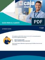 guia cliente_reactiva.pdf