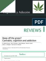 Cannabis-cognición-y-adiccion