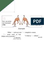 Plansa Ortograme - Ia, I-A