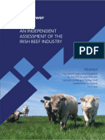 Jim-Power-Beef-Report-2020.pdf
