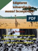 adaptarea_vietuitoarelor_la_mediul_inconjurator.pps