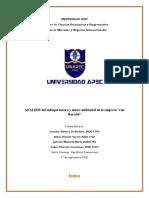 analisis macro y microambiental