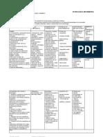 Plan de área informatica con DBA.docx