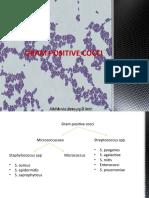 GRAM-POSITIVE-COCCI-SEM-1-1.pptx