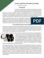 CruzCastillo_Francisco_M16S4PI.docx
