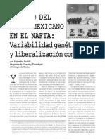 EL CASO DEL MAÍZ MEXICANO EN EL NAFTA