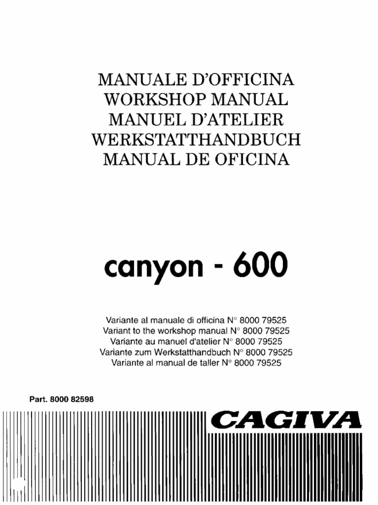 1996 Cagiva Canyon 600 Service Manual