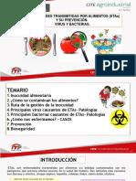ETAS ENFERMEDAES TRANSMITIDAS POR LOS ALIMENTOS VIRUS Y HOGOS.pdf