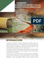 SEMINARIO SALUD COLECTIVA - DIAPOSITIVAS