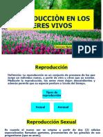REPRODUCCIÒN EN LOS SERES  VIVOS parte-1