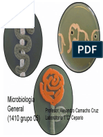 Microbiologia_1er_clase
