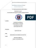 351905899-Monitoreo-Trabajo-Final-Ptar.docx