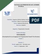 INFOGRAFIA DE LOS LENGUAJES DE PROGRAMACION (Felipe Santos Sinta)