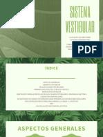 SISTEMA VESTIBULAR (2)