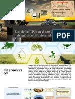 TICs (Trabajo Diagnostico de enfermedades) (1)