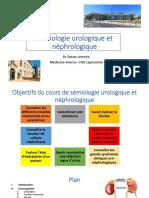 Sémiologie urologique et néphrologique sans questions.pdf