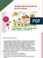 losprincipiosconstitucionalesdelderechodelafamilia-131017005926-phpapp02