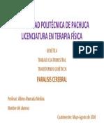 PORTADA ALBINO.pdf