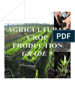AGRICULTURAL CROP PRODUCTION GRADE 9.docx