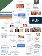 7 dermatologia.docx
