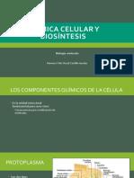 Capítulo 2. Química celular y biosíntesis.pptx