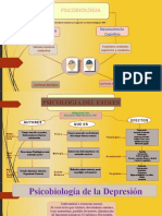 diapositivas mapa conceptual psicobiologia Tania