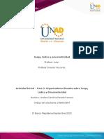 Formato 2 - Organizadores visuales sobre Juego, Lúdica y Psicomotricidad-Andrea Parada