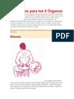 Ejercicios para los 5 Órganos