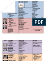 Resumen Final Bloque de Neuroanatomia