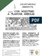 Plantaciones de invierno YA