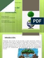 desarrollosustentable-150220112407-conversion-gate02