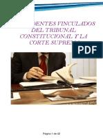 05.presedentes vinculados del tribunal constitucional y la corte suprema