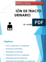 INFECCIONES DEL TRACTO URINARIO.pdf